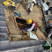 川越町善養寺様本堂 屋根一部改修工事
